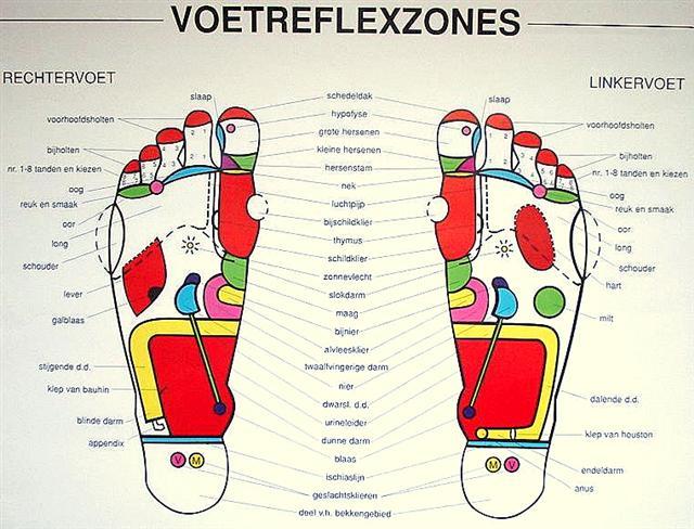 voetenkaart Voetreflex